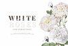 Floral wedding invitation mockup transparent png