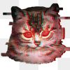 Cat with red laser eyes sticker  transparent png
