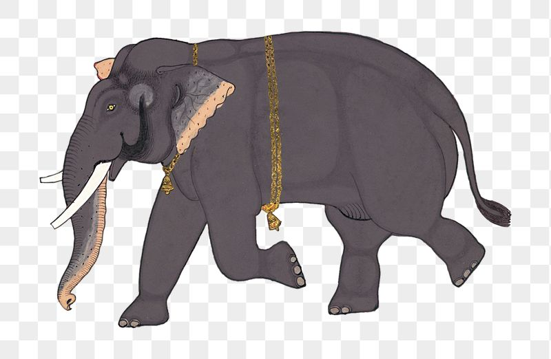 Hand Drawn Opaque Watercolor Elephant Design Element Indian elephant african elephant elephantidae child care. rawpixel