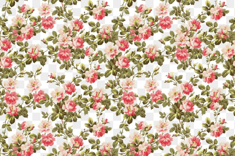 Red Floral Pattern Seamless Watercolor Flower Pattern Digital Pattern Paper Repeat Pattern Digital Download PNG JPEG DrawBerry SP-066