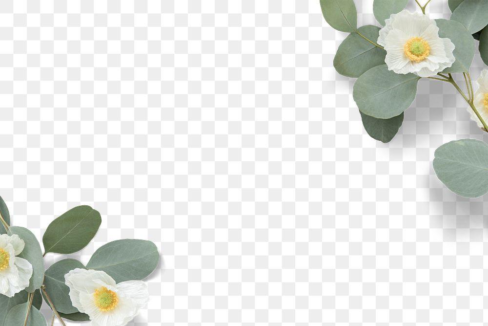 white poppy flower frame design element