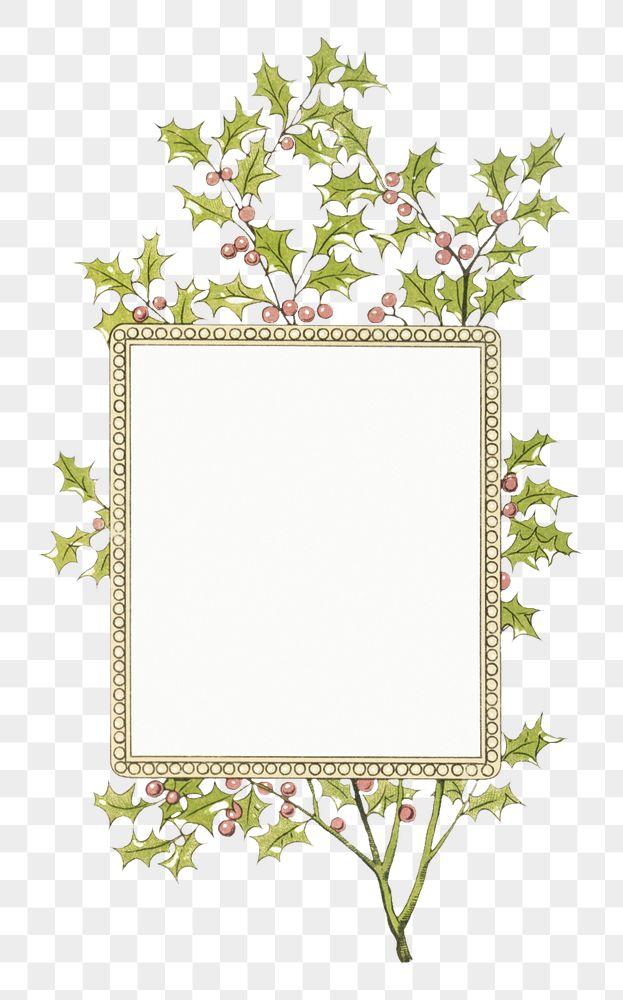 Festive holly leaves frame transparent png