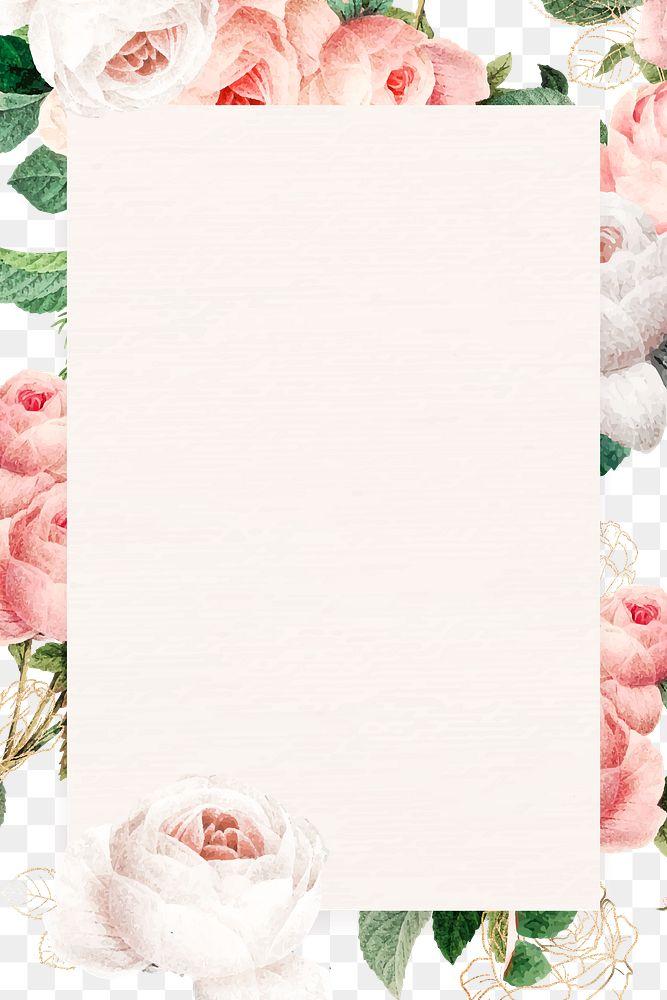 Pink cabbage rose rectangled frame design element