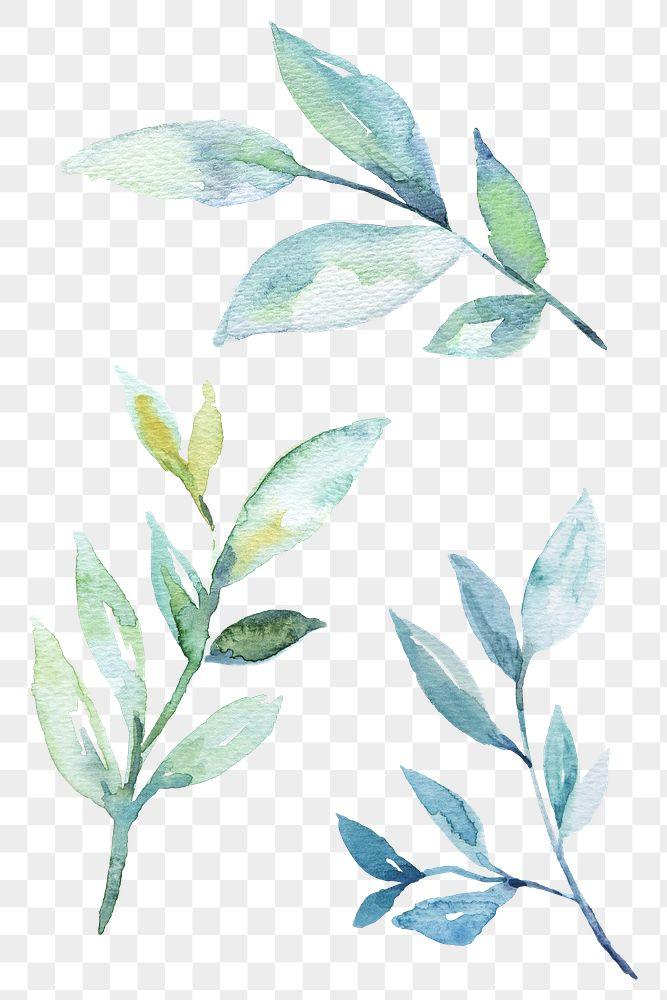 Branch watercolor design element transparent png