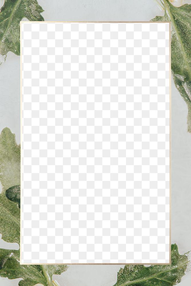 Chrysanthemum leaves gray frame png