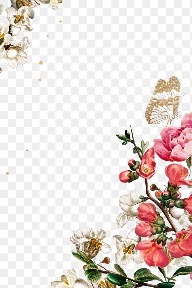 Elegant valentine's flowers border png watercolor illustration