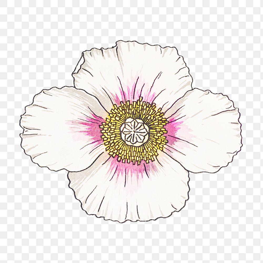 Vintage flower transparent png design element