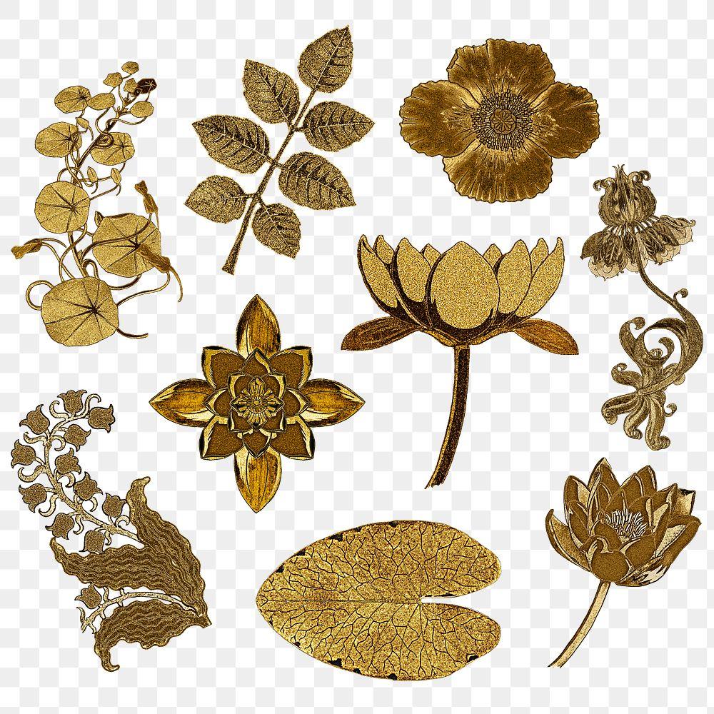 Vintage gold flower and leaf transparent png design element set