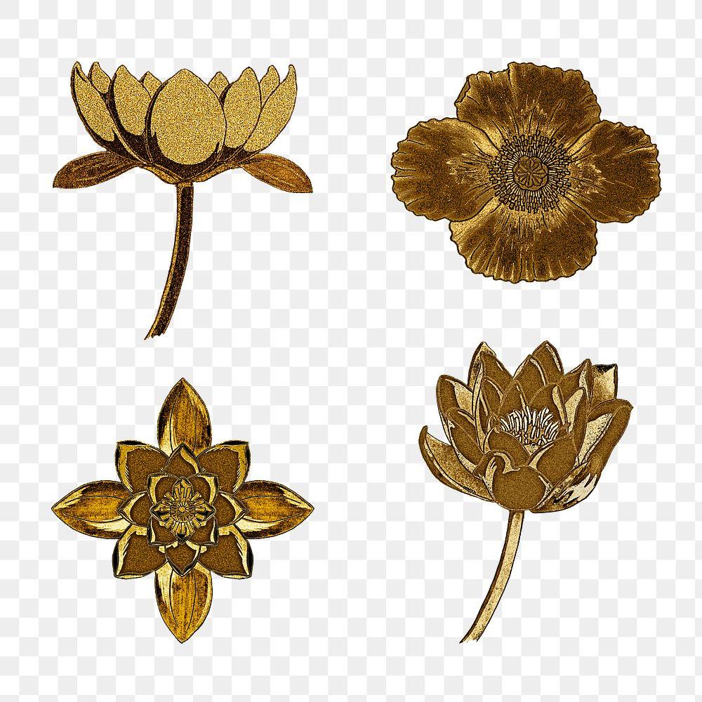 Vintage gold water lily and poppy flower set transparent png design element