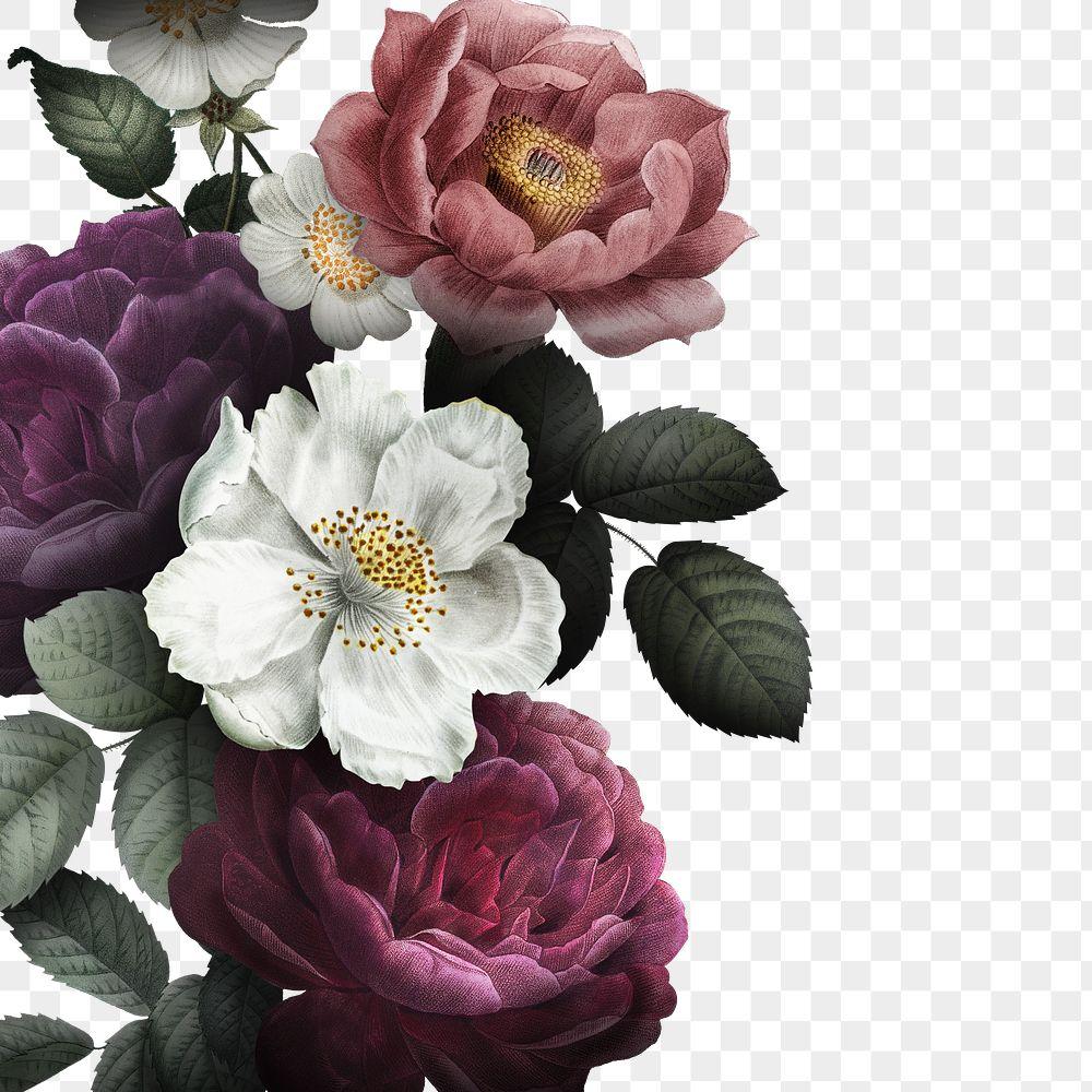Beautiful hand drawn colorful roses transparent png