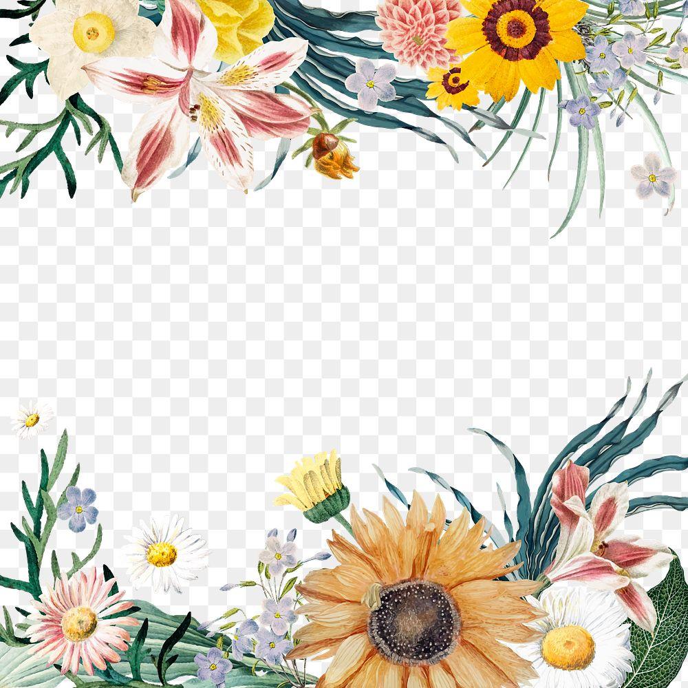 Summer bloom floral border png