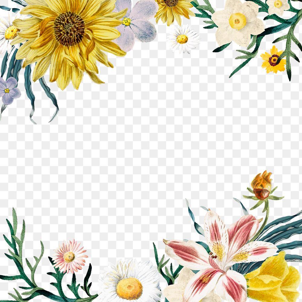 Summer floral png border colorful
