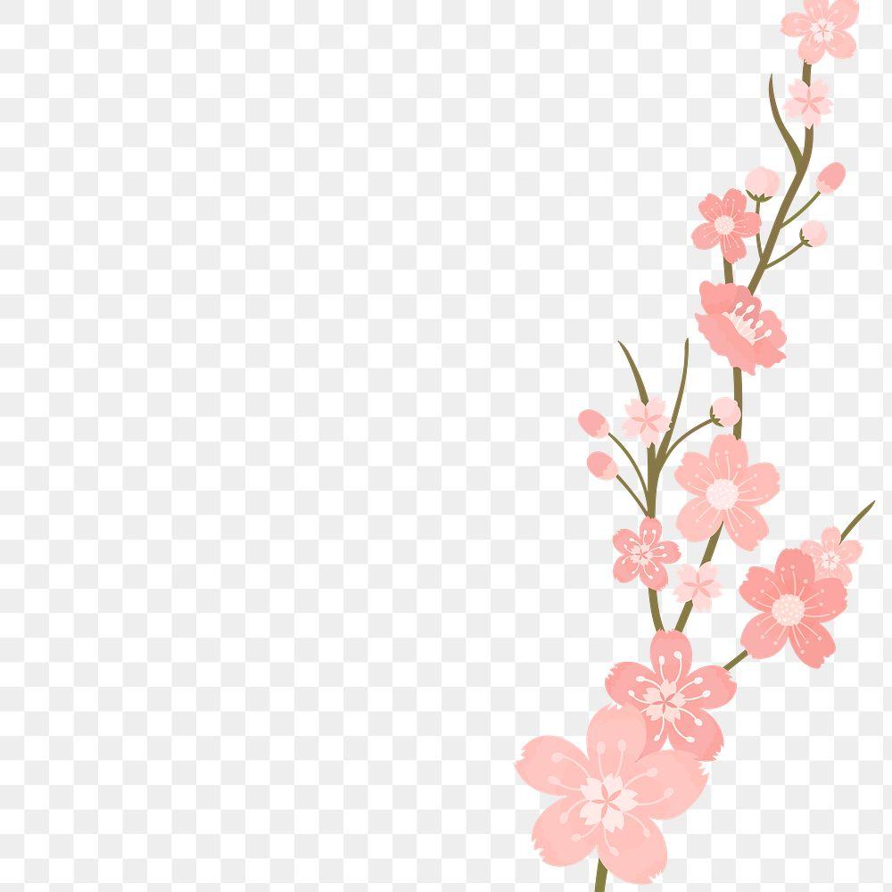 Png Japanese cherry blossom transparent background Hanami festival